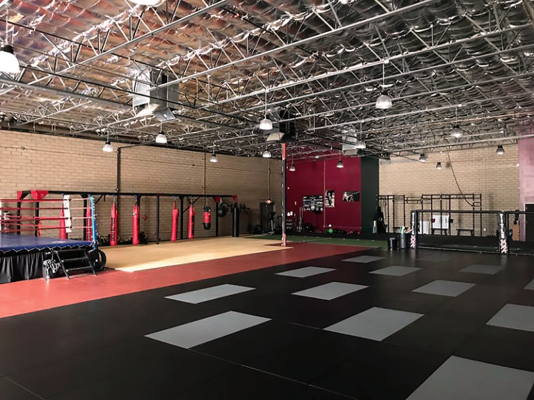 Mixed Martial Arts continues to make strides ahead of the competition