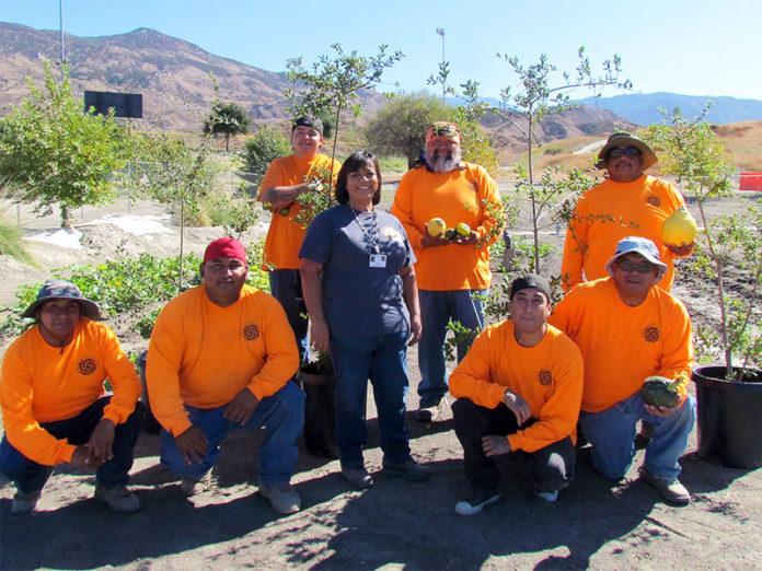 The Hemet & San Jacinto - Soboba Community Garden Grows