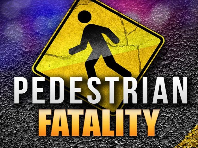 Fatal Vehicle versus Pedestrian Traffic Collision
