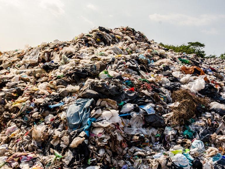 Trash scavengers who help keep cities clean plea for vaccine