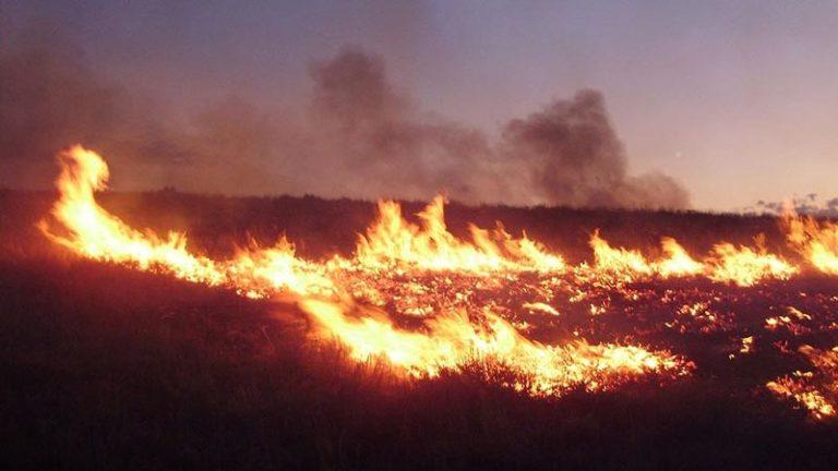 Crews Halt Gilman Fire Near Pass Area