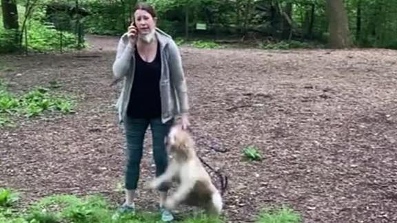 Video shows Amy Cooper, a white woman, call police on Christian Cooper, a black man, after he asked her to put her dog on a leash in Central Park.