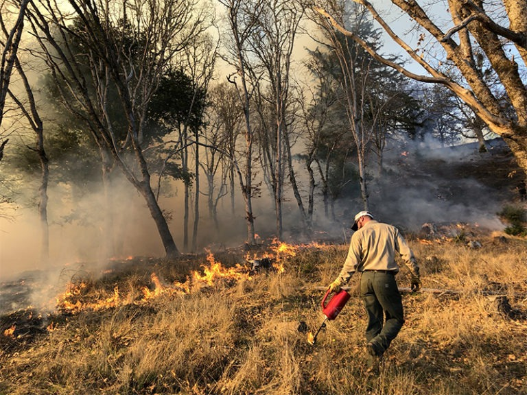 Groups Seek Liability Reforms to Fight Wildfire