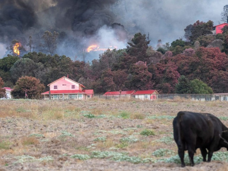 Fire risk amid a housing crisis — California's challenging new reality