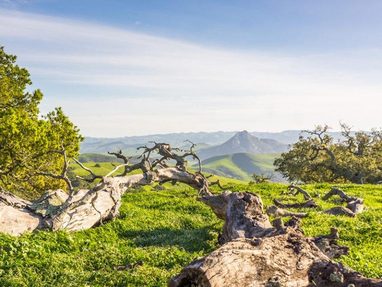 Todd Renfrew of California Outdoor Properties Sells Morro Bay Ranch for $7 Million